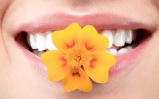 Цветок в зубах