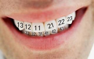 Нумерация на зубах