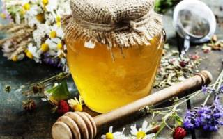 Мед и травы