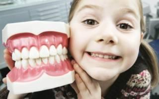 Ребенок и макет зубов