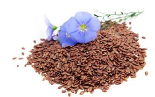 Семена и цветок льна