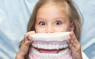 Ребенок с макетом зубов